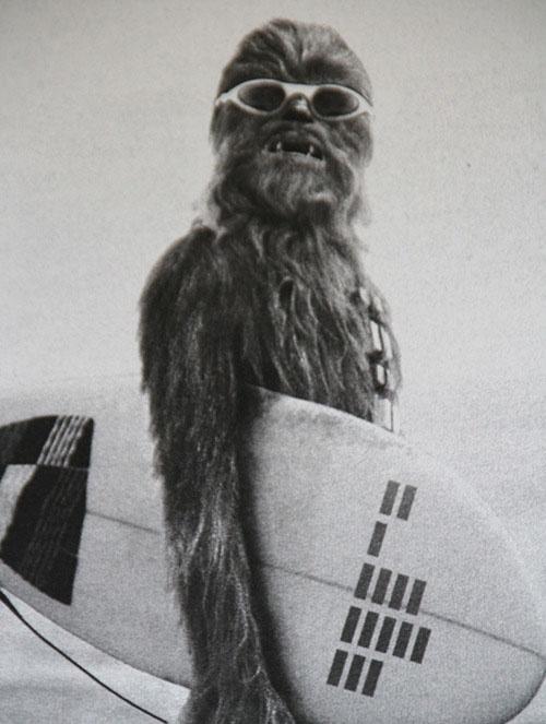 surfer chewie