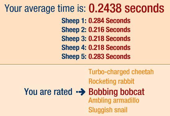 bbc sheep test