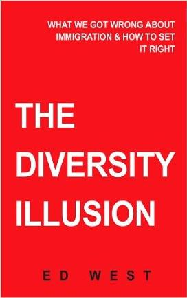 the diversity illusion 02