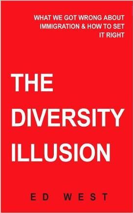 the diversity illusion 02